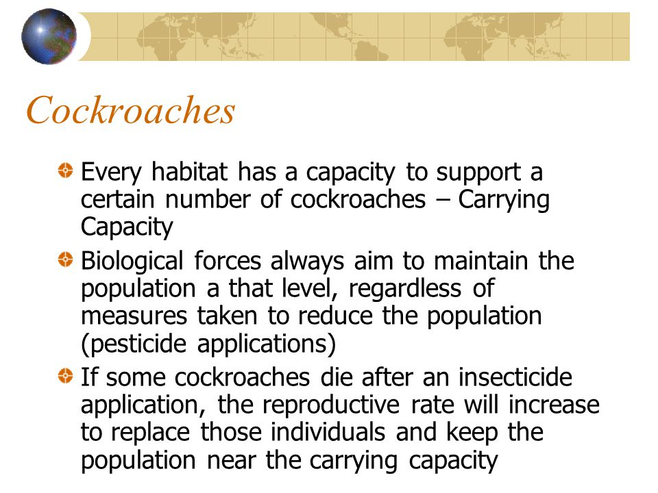 Cockroaches Every habitat has a capacity to support a certain number of cockroaches – Carrying Capacity.