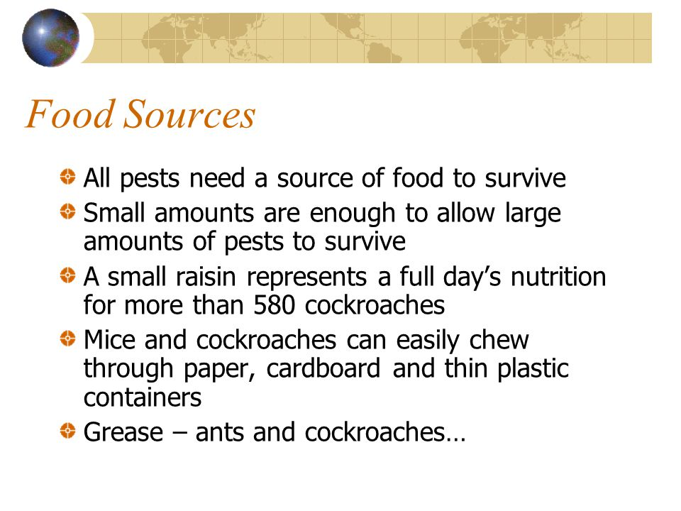 Food Sources All pests need a source of food to survive