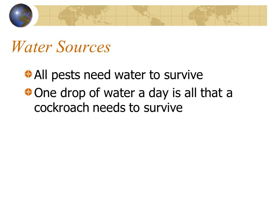 Water Sources All pests need water to survive