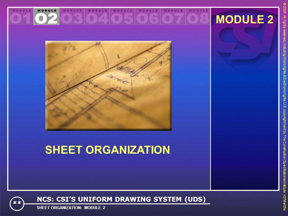MODULE 2 SHEET ORGANIZATION