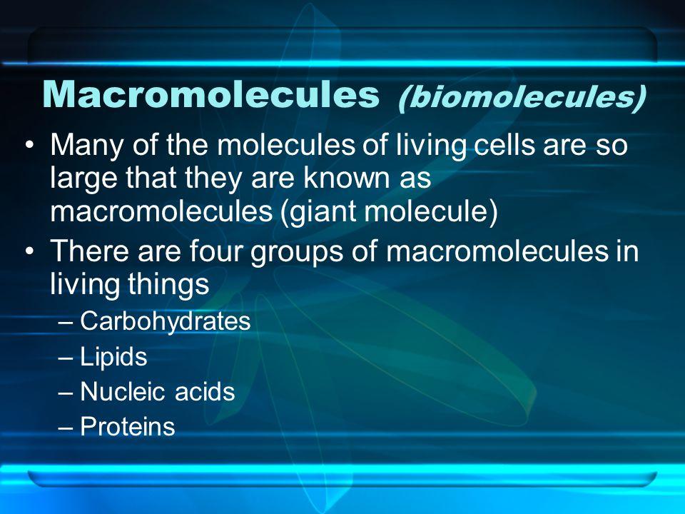 Macromolecules (biomolecules)