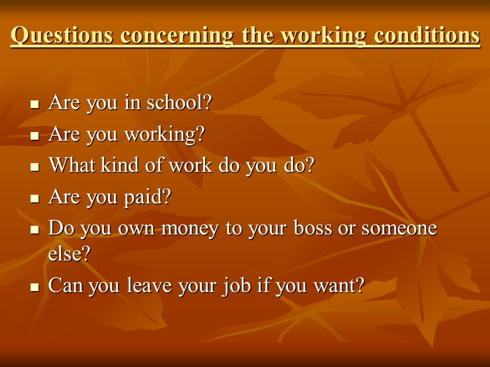 Questions concerning the working conditions