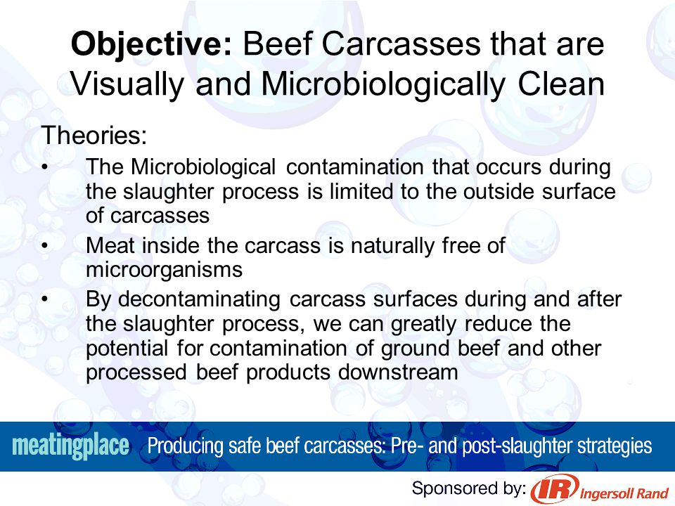 Objective: Beef Carcasses that are Visually and Microbiologically Clean