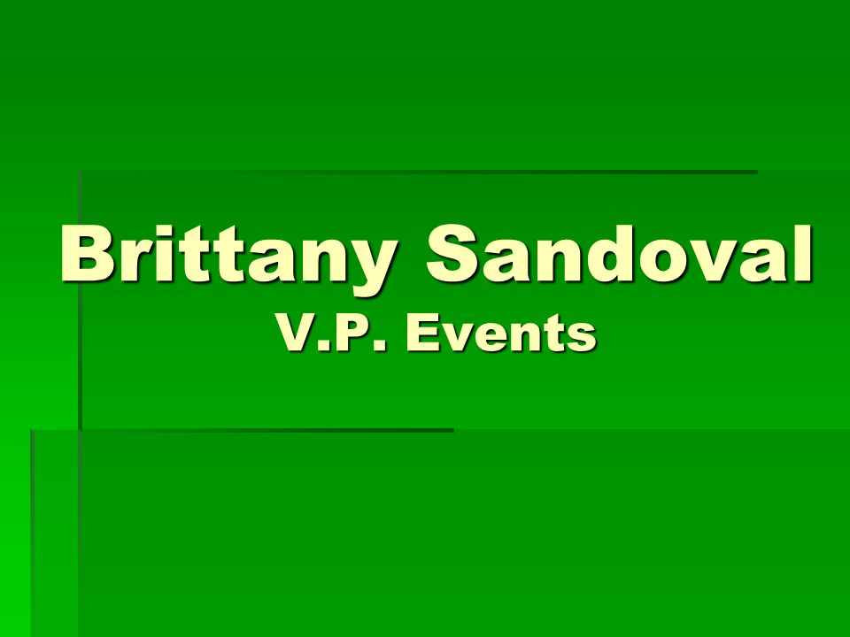 Brittany Sandoval V.P. Events