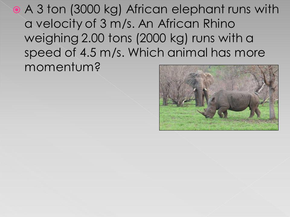 A 3 ton (3000 kg) African elephant runs with a velocity of 3 m/s