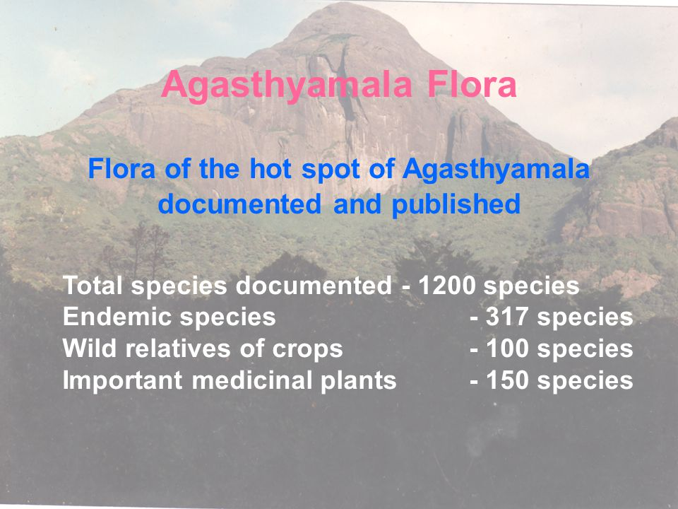 Flora of the hot spot of Agasthyamala documented and published