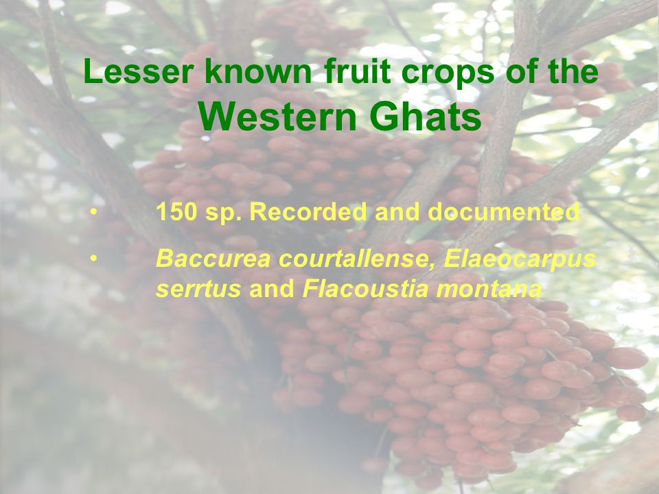 Lesser known fruit crops of the Western Ghats