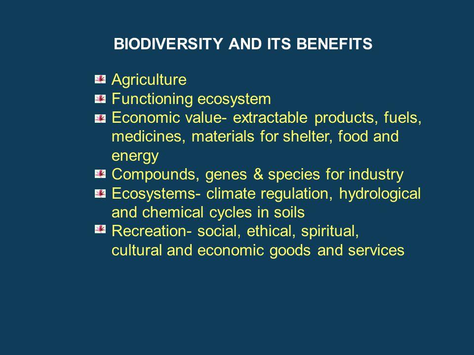 BIODIVERSITY AND ITS BENEFITS