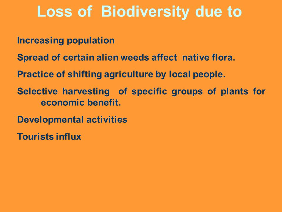 Loss of Biodiversity due to