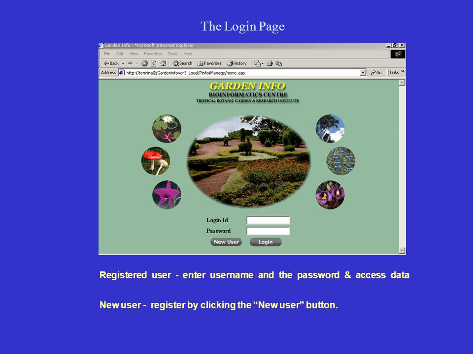 The Login Page Registered user - enter username and the password & access data New user - register by clicking the New user button.