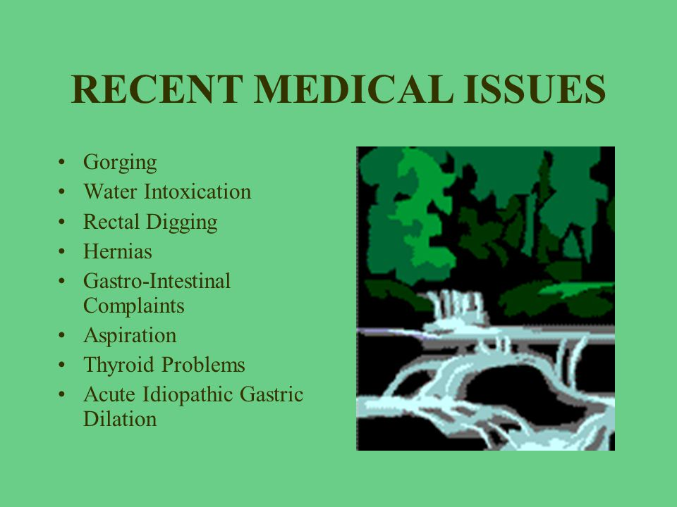 RECENT MEDICAL ISSUES Gorging Water Intoxication Rectal Digging