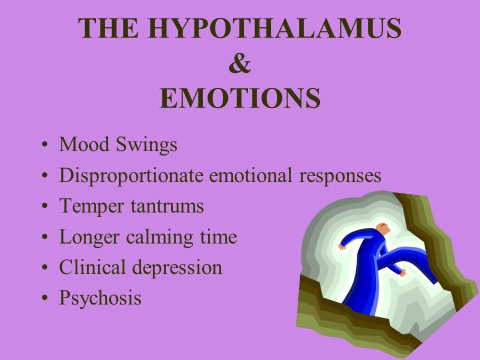 THE HYPOTHALAMUS & EMOTIONS