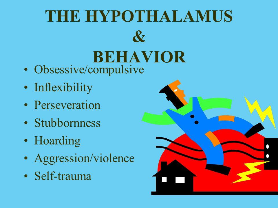 THE HYPOTHALAMUS & BEHAVIOR