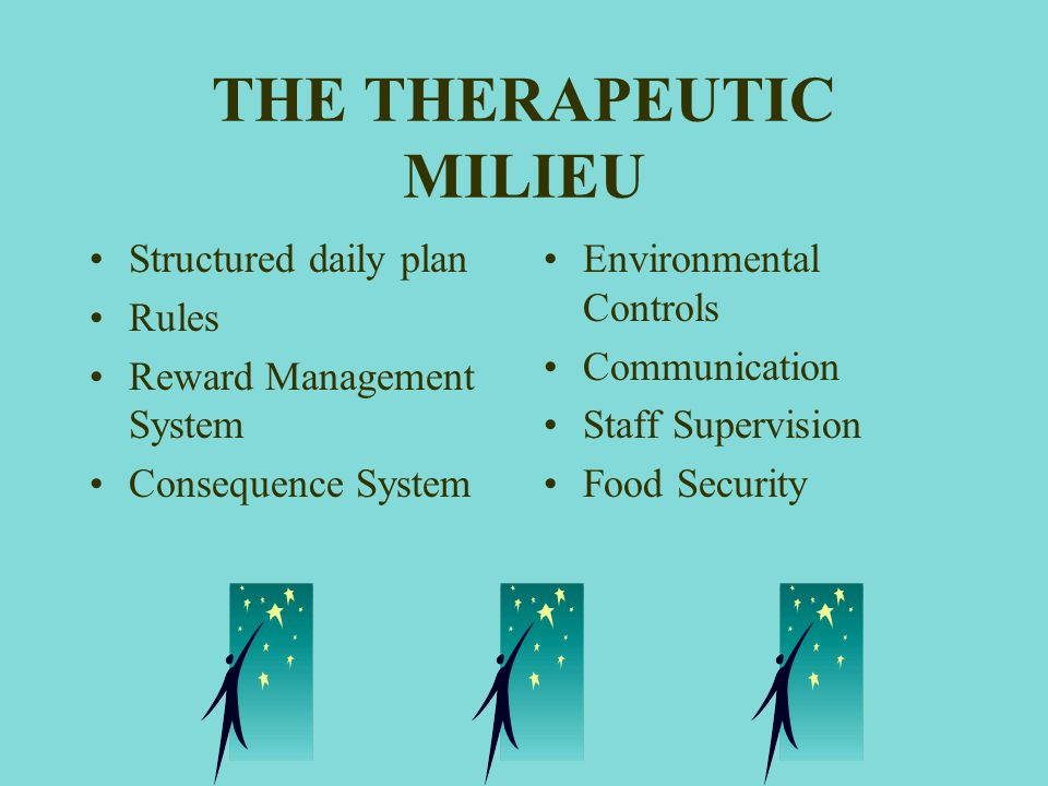 THE THERAPEUTIC MILIEU
