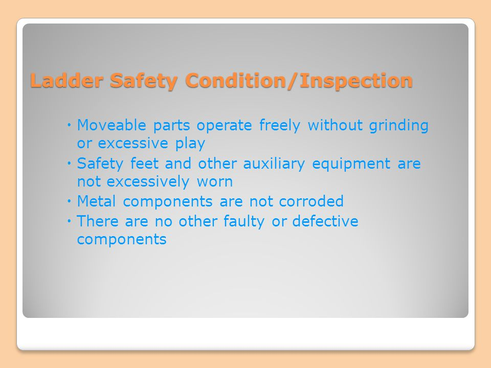 Ladder Safety Condition/Inspection
