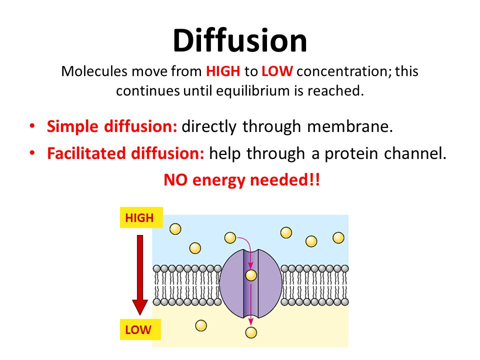 Diffusion Molecules move from HIGH to LOW concentration; this continues until equilibrium is reached.