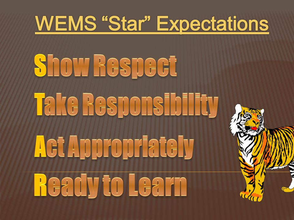WEMS Star Expectations