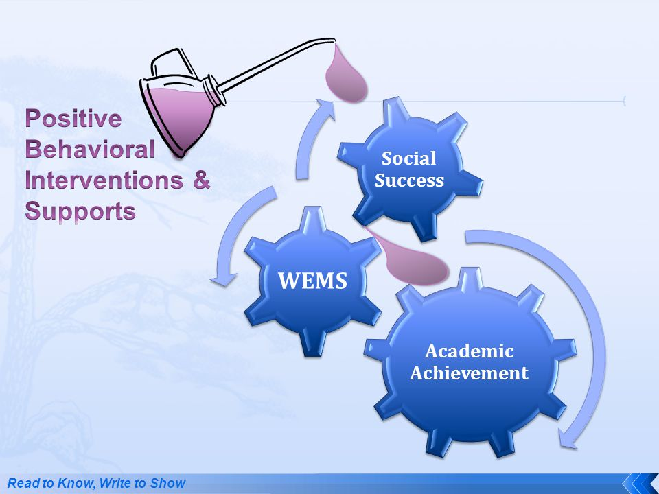 Positive Behavioral Interventions & Supports WEMS Social Success