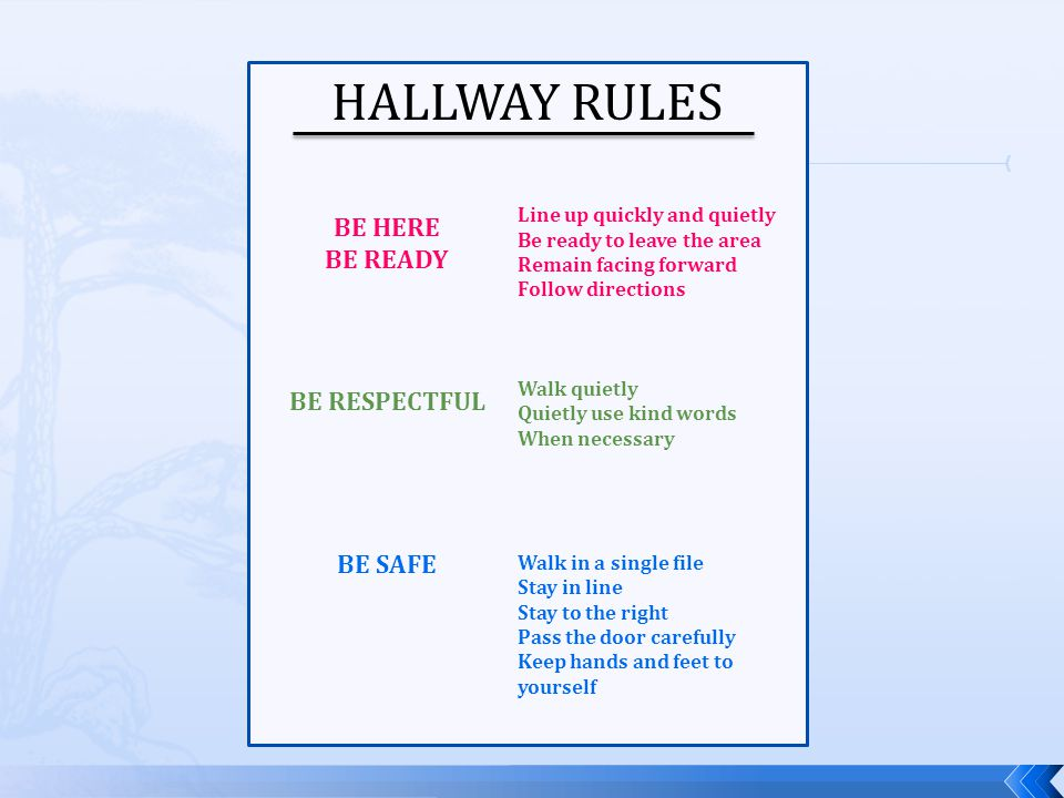 HALLWAY RULES BE HERE BE READY BE RESPECTFUL BE SAFE