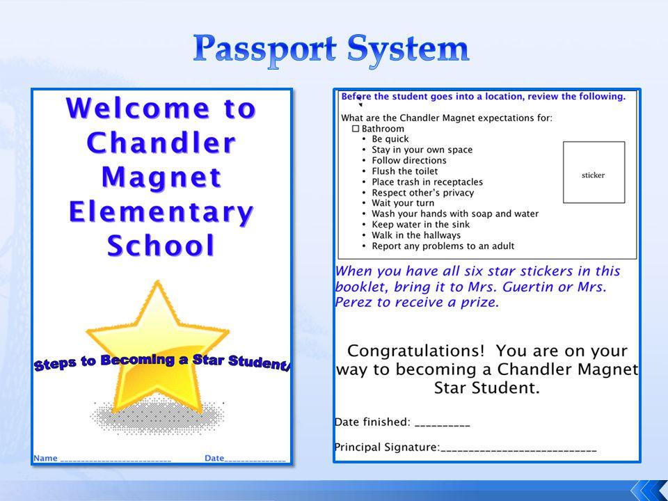 Passport System