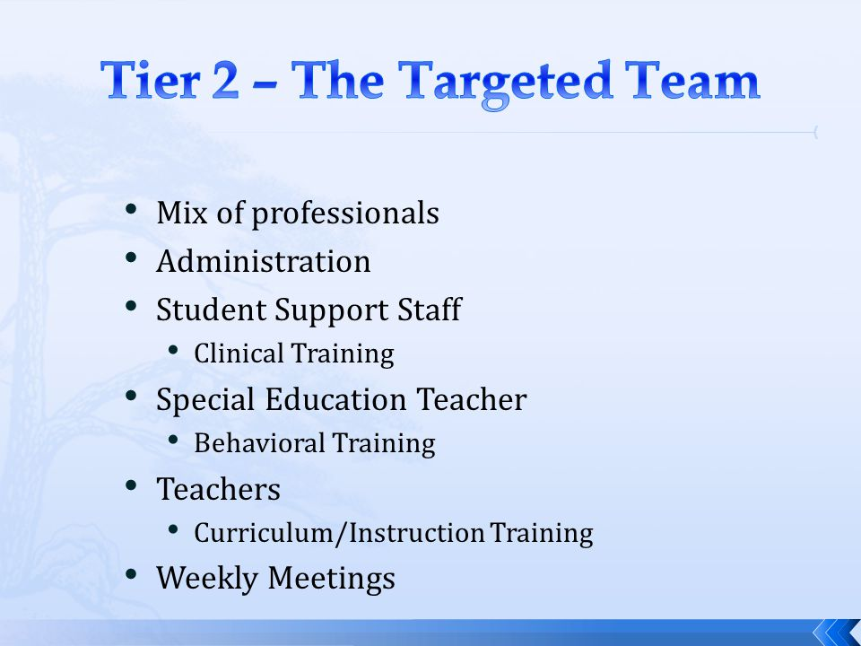Tier 2 – The Targeted Team