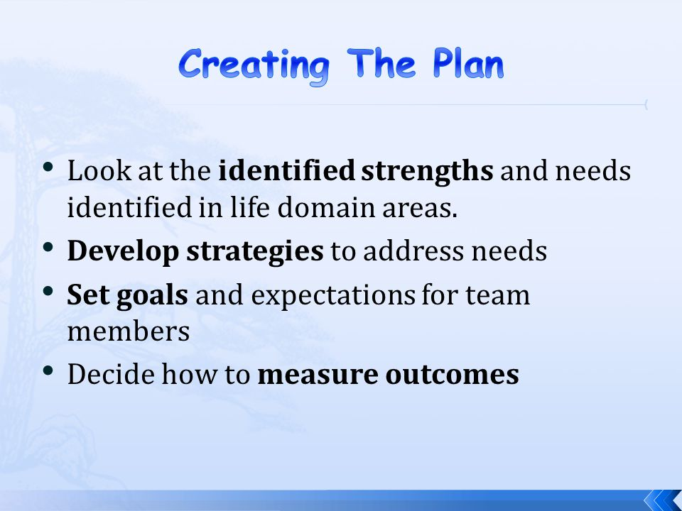 Creating The Plan Look at the identified strengths and needs identified in life domain areas. Develop strategies to address needs.