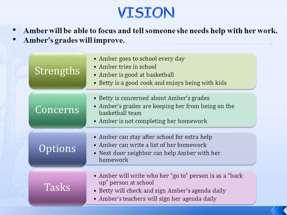 VISION Strengths Concerns Options Tasks