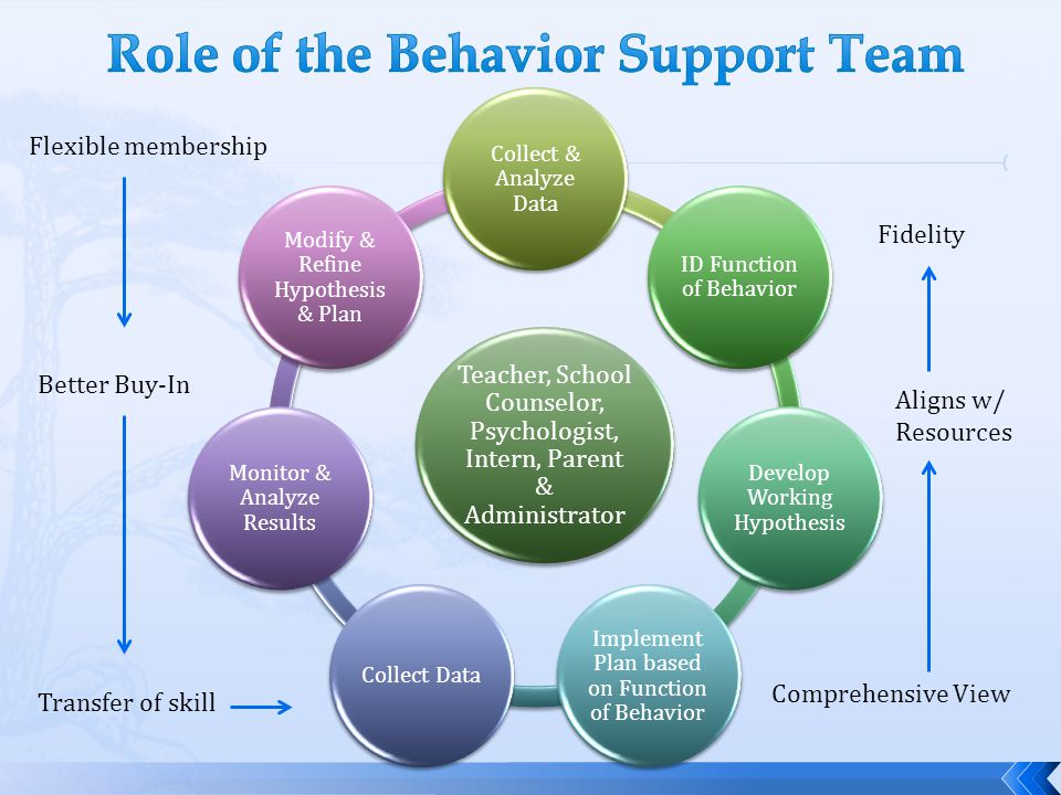 Role of the Behavior Support Team