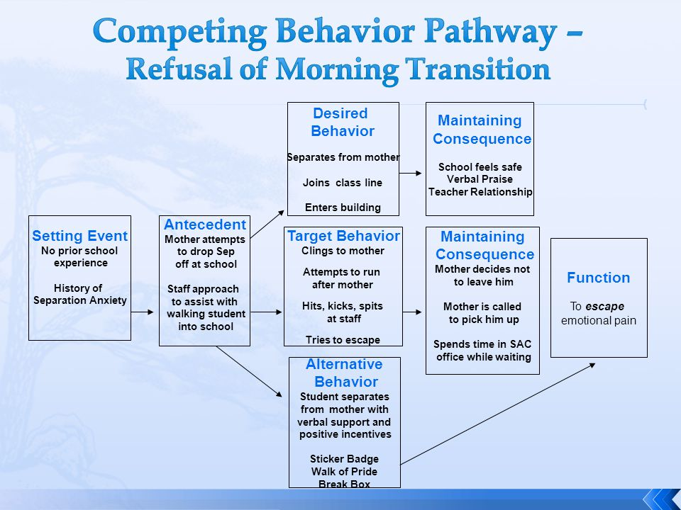 Competing Behavior Pathway – Refusal of Morning Transition