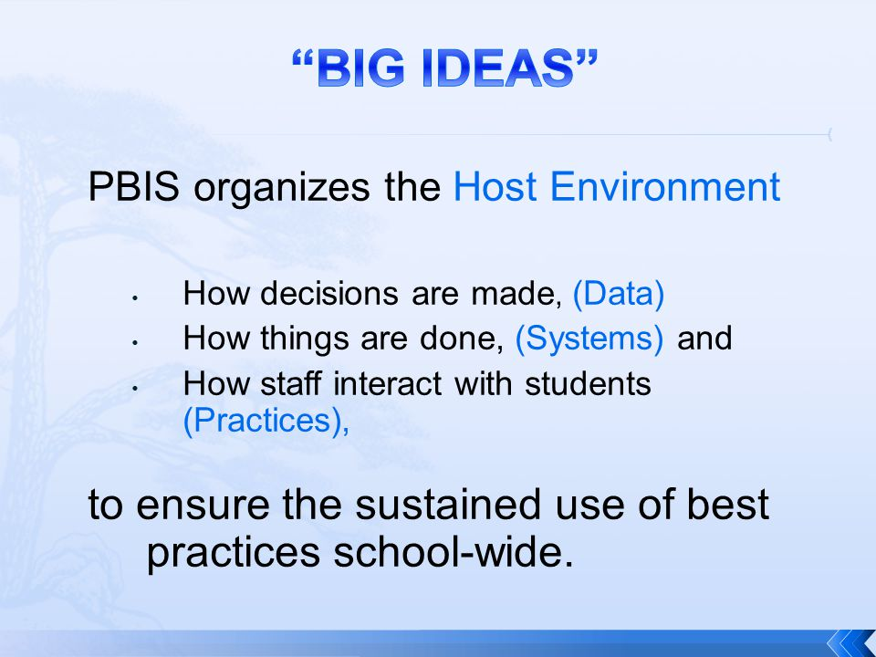 BIG IDEAS to ensure the sustained use of best practices school-wide.