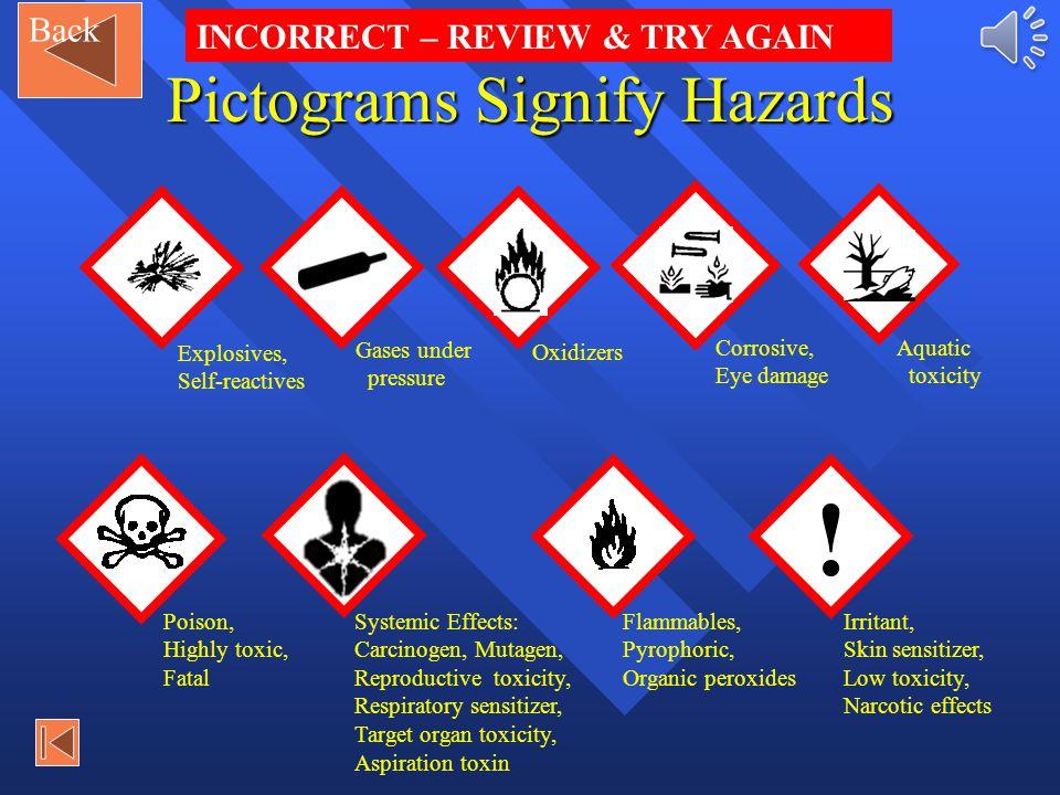Pictograms Signify Hazards