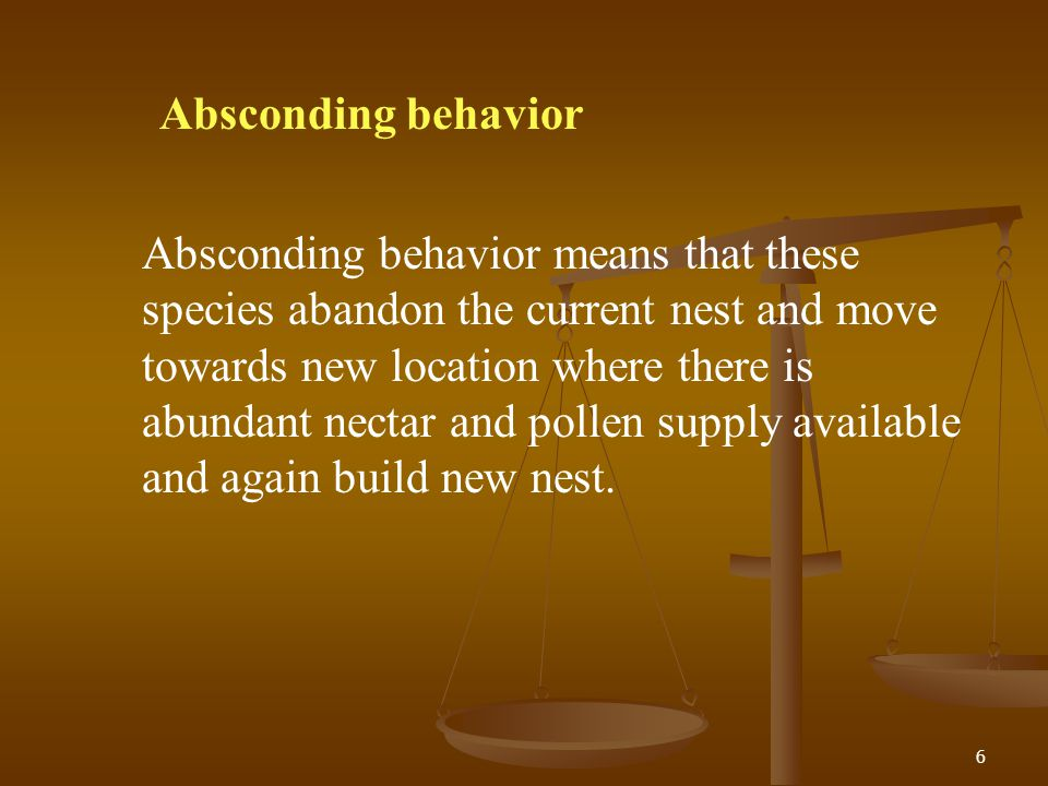 Absconding behavior