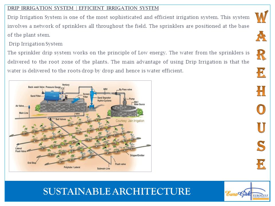 DRIP IRRIGATION SYSTEM | EFFICIENT IRRIGATION SYSTEM
