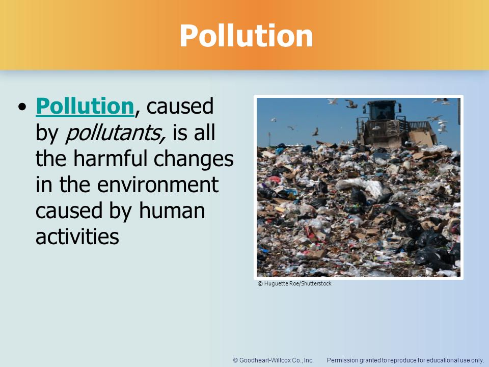 Pollution Pollution, caused by pollutants, is all the harmful changes in the environment caused by human activities.