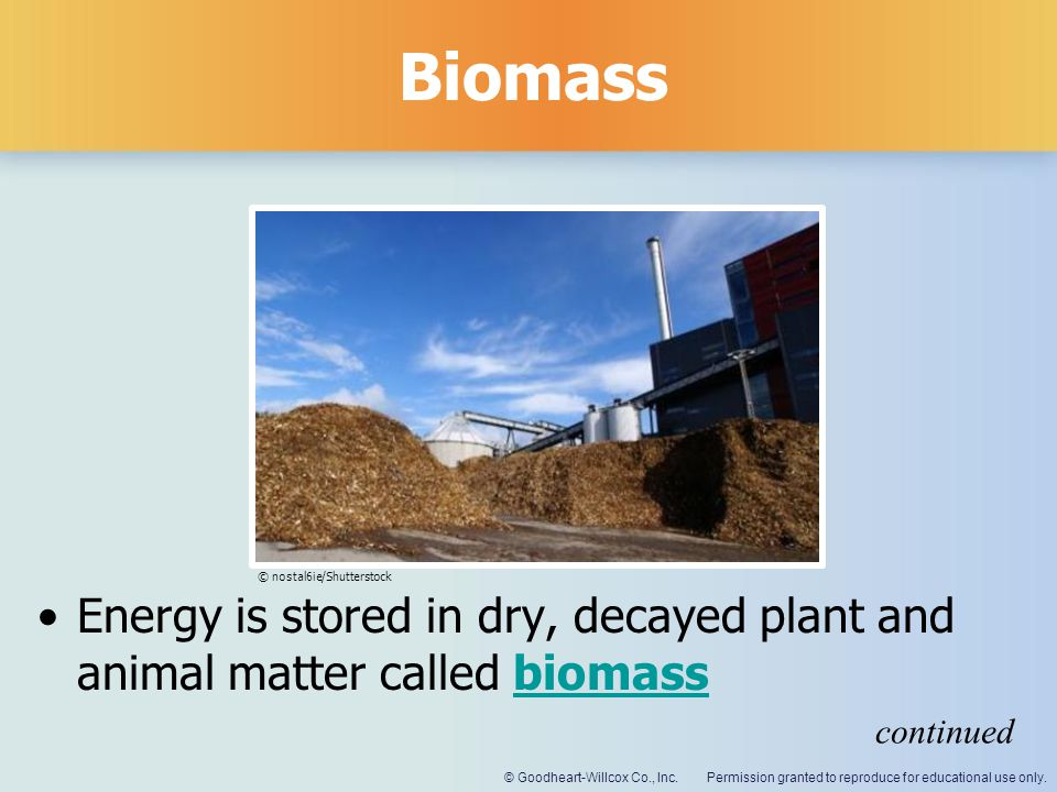 Biomass © nostal6ie/Shutterstock. Energy is stored in dry, decayed plant and animal matter called biomass.