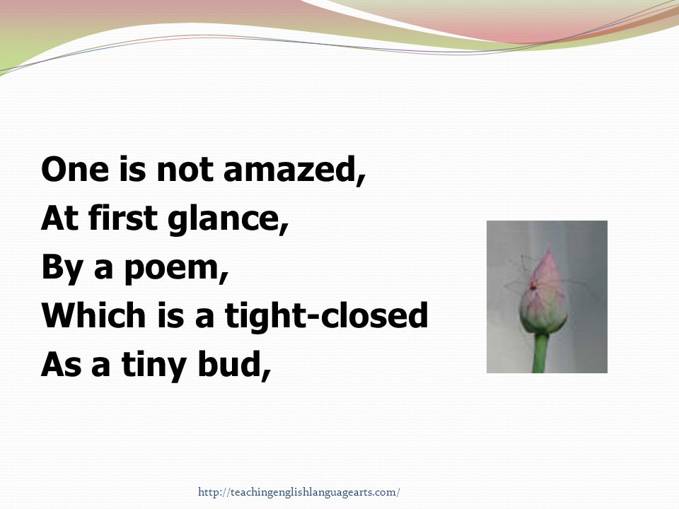 One is not amazed, At first glance, By a poem, Which is a tight-closed As a tiny bud,