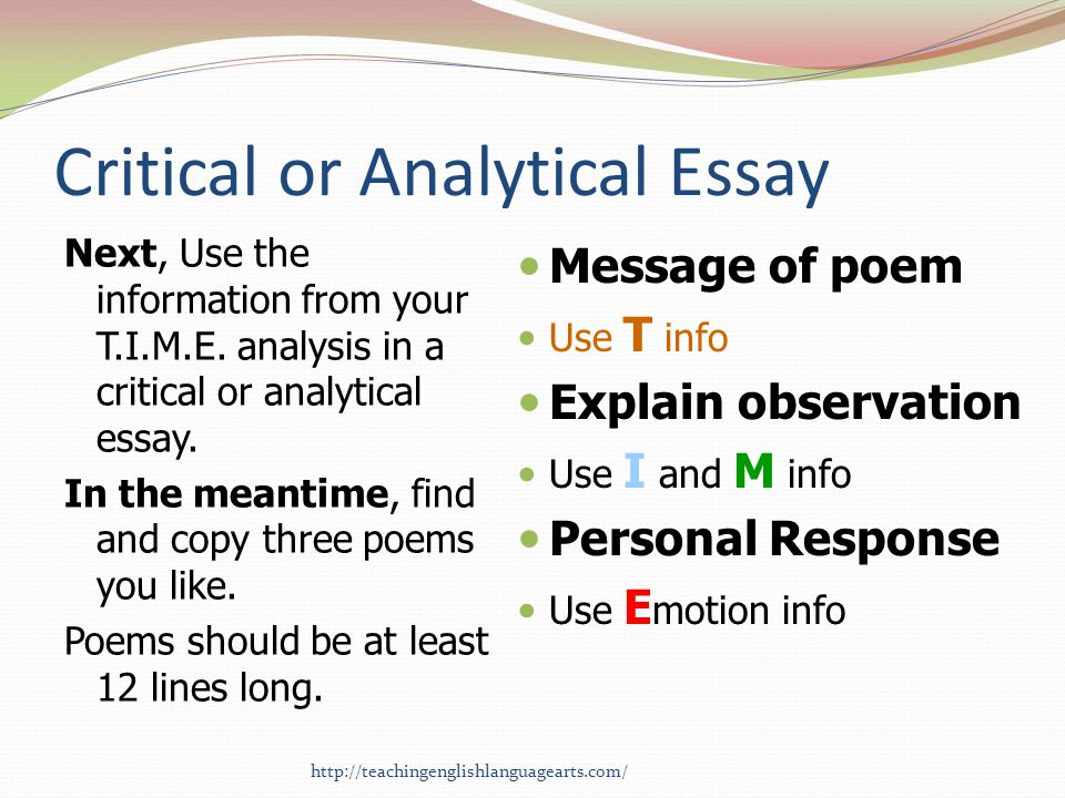 Critical or Analytical Essay