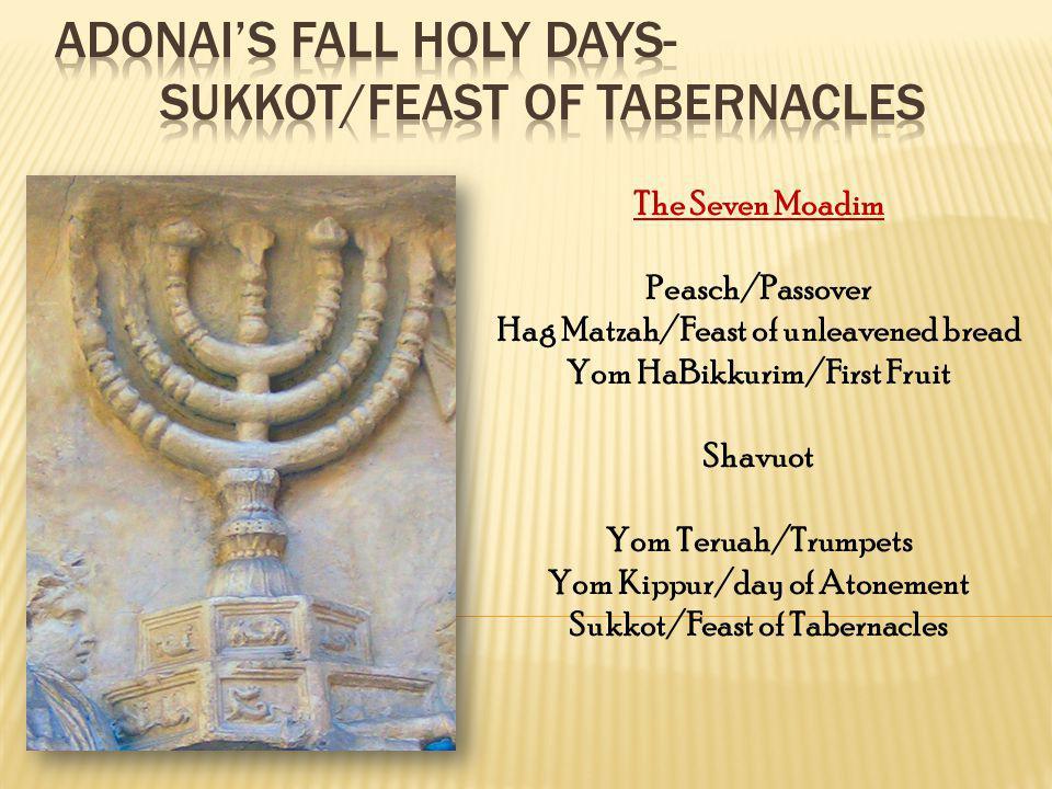 Adonai's Fall Holy Days- Sukkot/Feast of Tabernacles