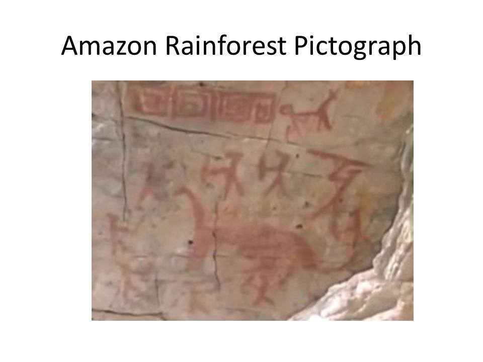 Amazon Rainforest Pictograph