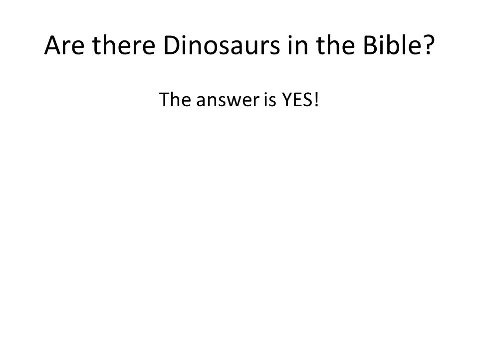 Are there Dinosaurs in the Bible