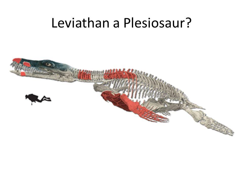 Leviathan a Plesiosaur