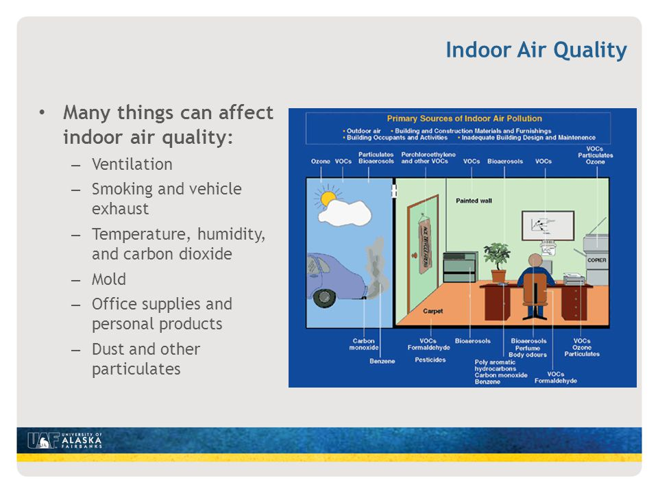 Indoor Air Quality Many things can affect indoor air quality: