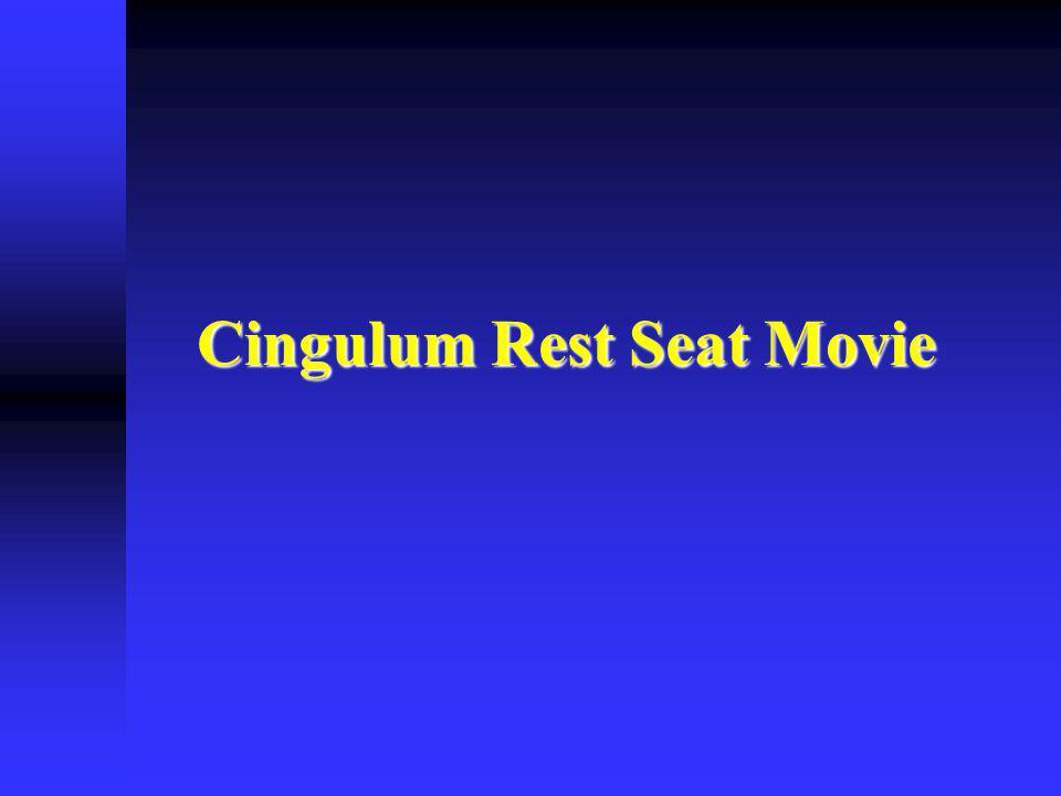 Cingulum Rest Seat Movie