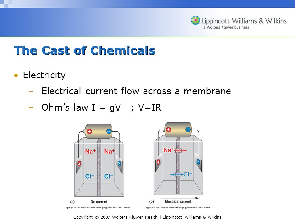The Cast of Chemicals Electricity