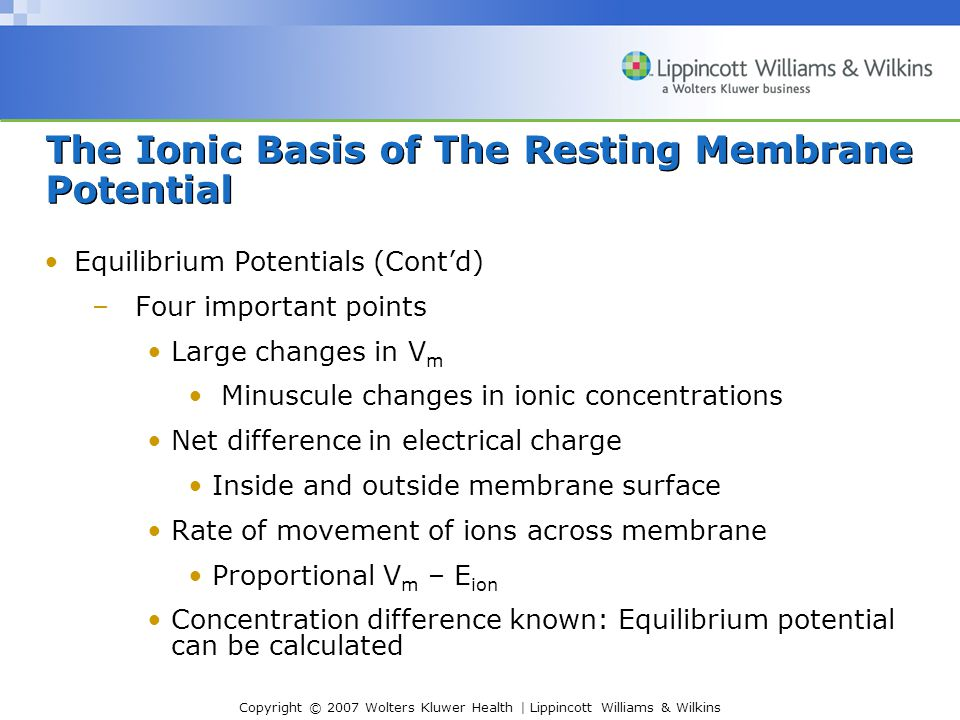 The Ionic Basis of The Resting Membrane Potential