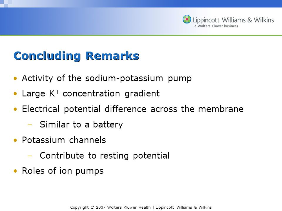 Concluding Remarks Activity of the sodium-potassium pump