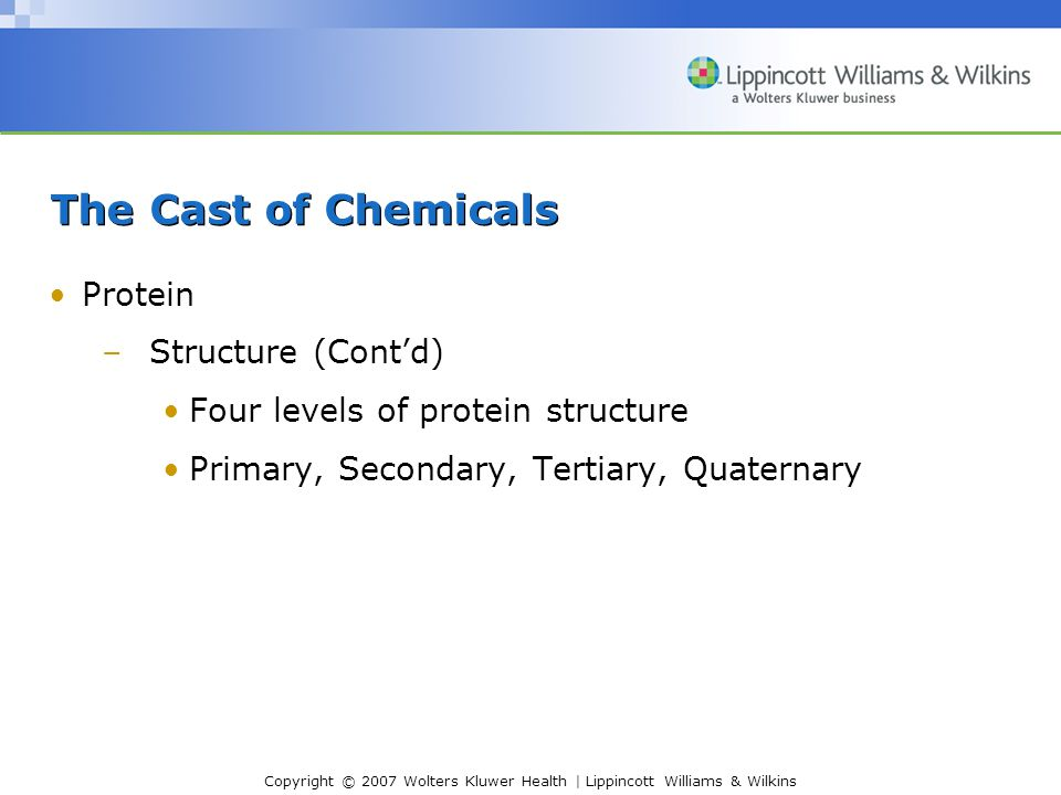 The Cast of Chemicals Protein Structure (Cont'd)