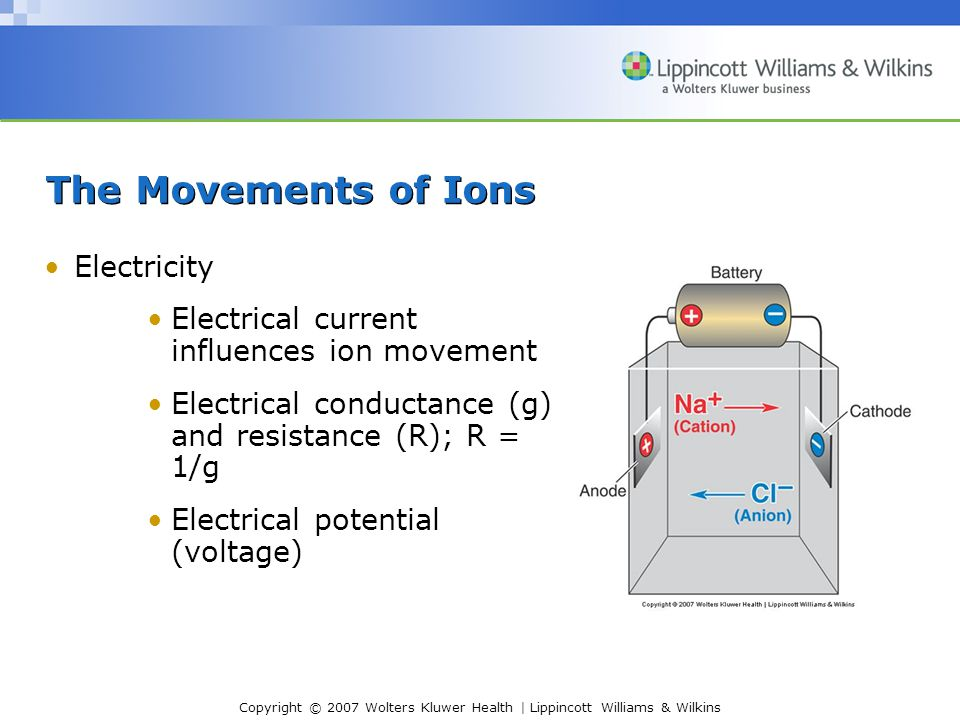 The Movements of Ions Electricity