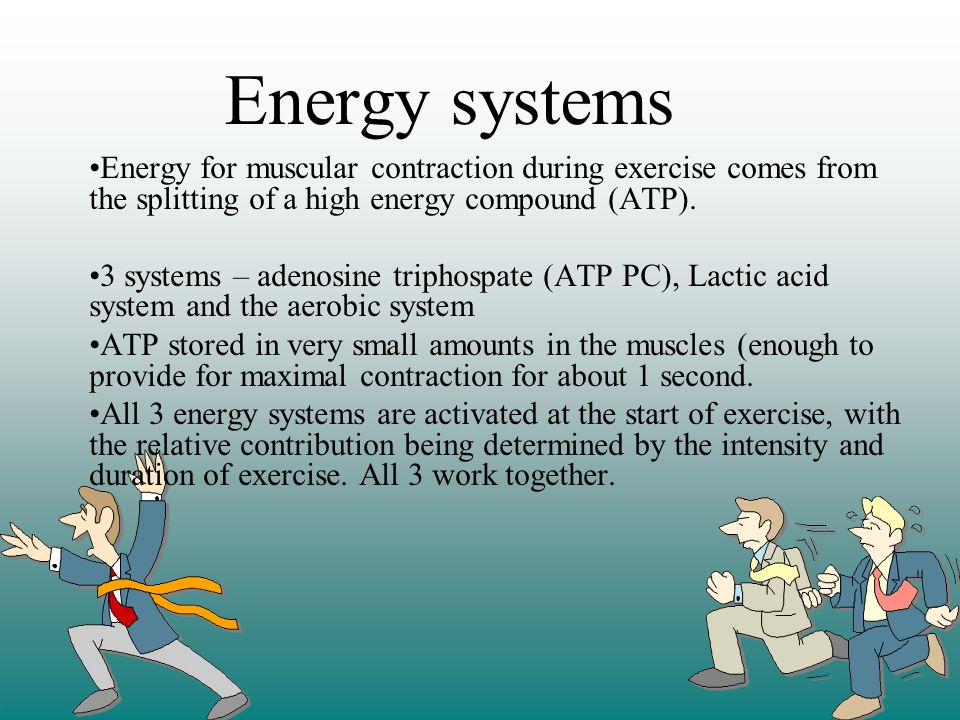 Energy systems Energy for muscular contraction during exercise comes from the splitting of a high energy compound (ATP).