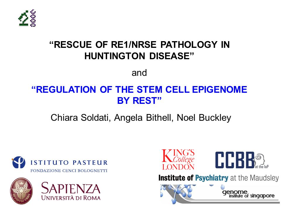 RESCUE OF RE1/NRSE PATHOLOGY IN HUNTINGTON DISEASE and